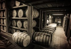 Bourbon Basics – American White Oak Barrels